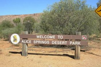 Top 10 things to do in alice springs alice springs tourist park - Alice springs tourist office ...